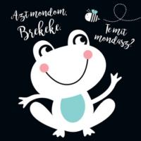AZT MONDOM: BREKEKE. TE MIT MONDASZ? - Textilkönyv