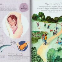 9 hónap - A terhesség időszakáról az egész családnak
